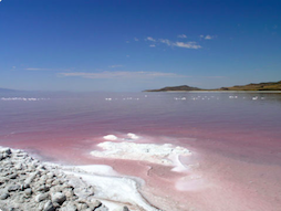 Picture of the Great Salt Lake in Utah
