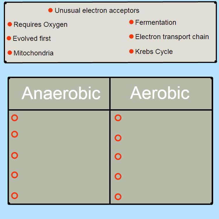 Aerobic vs Anaerobic Respiration | CK-12 Foundation