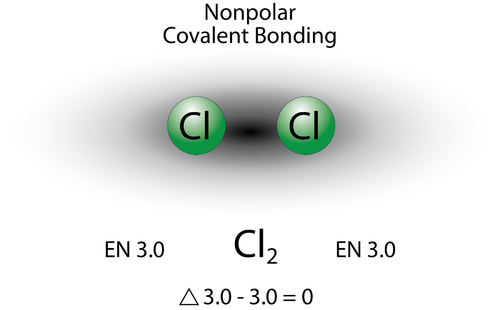 Chlorine gas has a nonpolar covalent bond