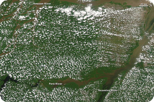 Clouds forming above the Amazon Rainforest due to transpiration