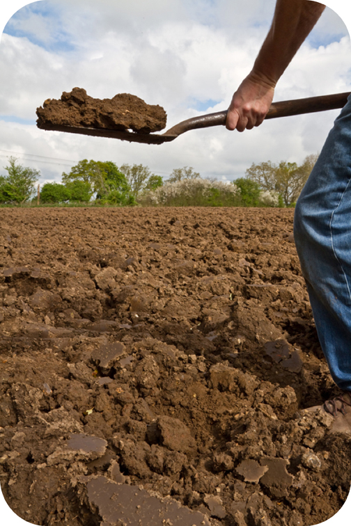 Types of soils read earth science ck 12 foundation for Things found in soil