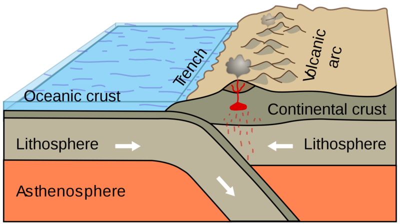 Subduction of an oceanic plate beneath a continental plate causes earthquakes and forms a line of volcanoes known as a continental arc