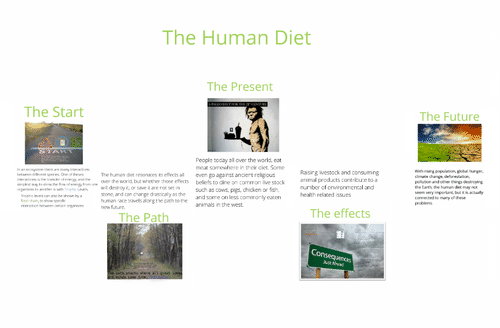 The Human Diet
