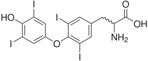 Structure of thyroxine, which helps regulate metabolism