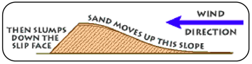 How a sand dune forms
