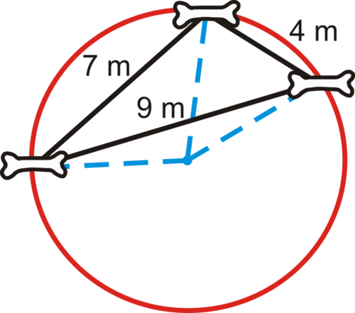 Perpendicular Bisectors and the Circumcenter
