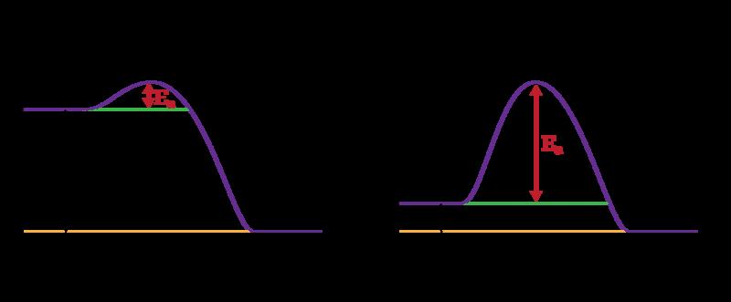 Potential Energy Diagrams   CK-12 Foundation