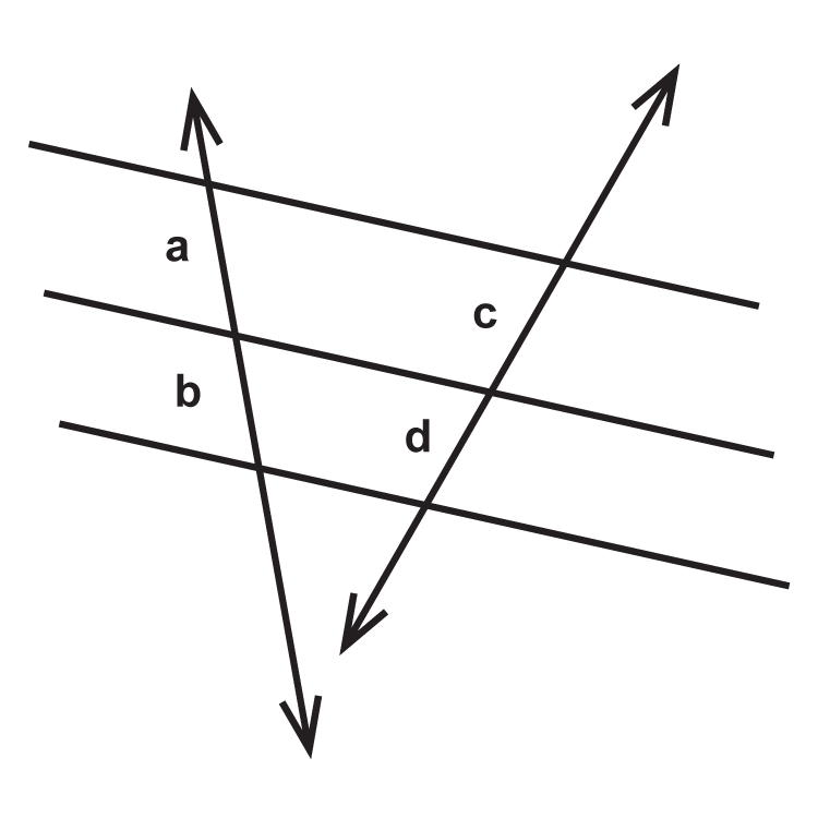 Parallel Lines Transversals And Proportionality Read