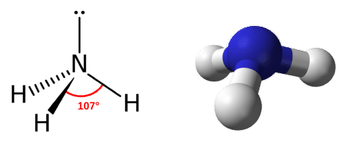 Structure of ammonia