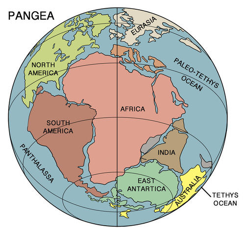 The supercontinent Pangaea