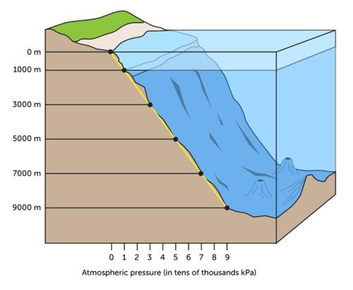 Diagram illustrating pressure in relation to depth