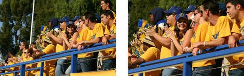 fans in the bleacher
