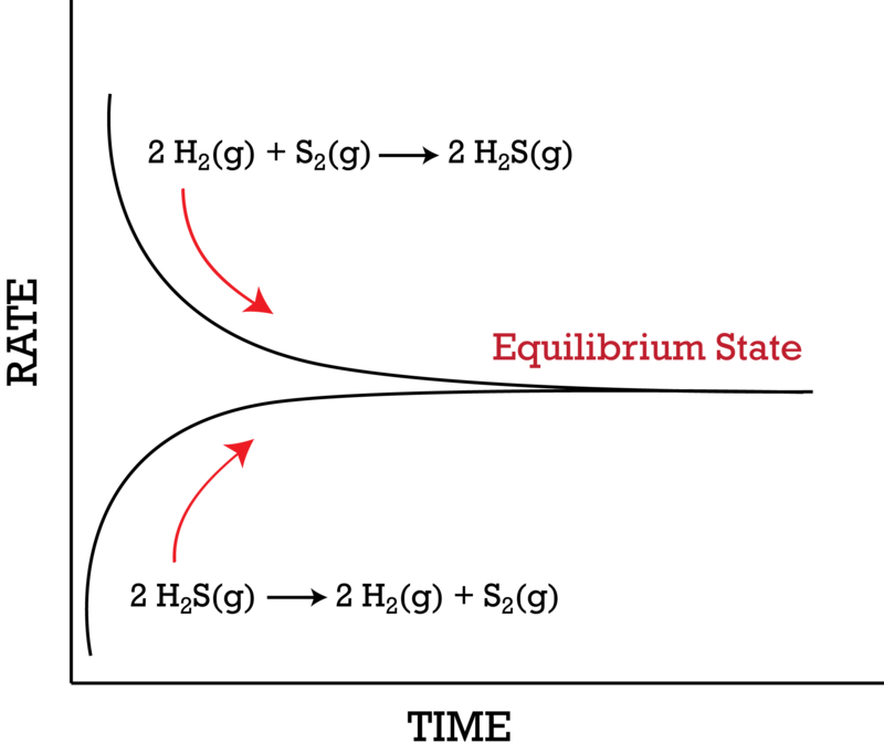 Introduction to Equilibrium