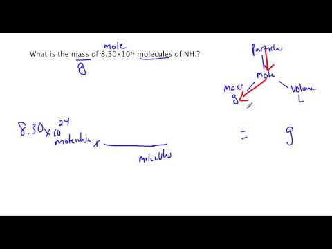 Conversions Between Mass And Number Of Particles Ck 12 Foundation