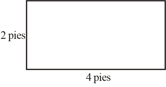 Triángulos y Paralelogramos