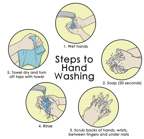 Proper hand washing helps prevent the spread of pathogens
