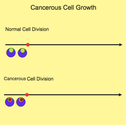 Cancerous Cell Growth