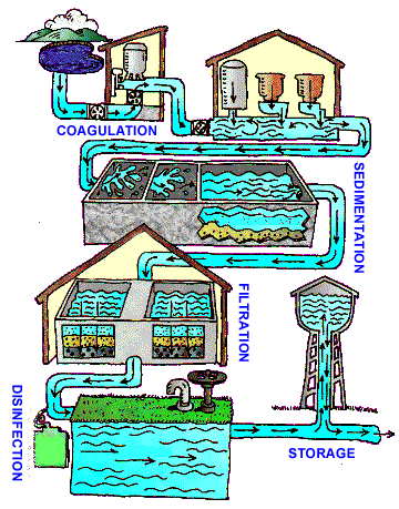 Coagulation, sedimentation, filtration, and disinfection are the four steps of treating water