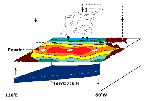 Diagram of El Nino years on the Pacific Ocean