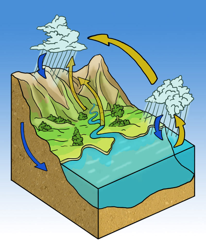 Water Cycle ( Read ) | Biology | CK-12 Foundation