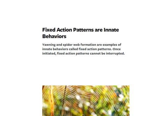 Fixed Action Patterns are Innate Behaviors