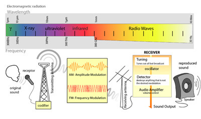 Radio Waves Quiz - MS PS