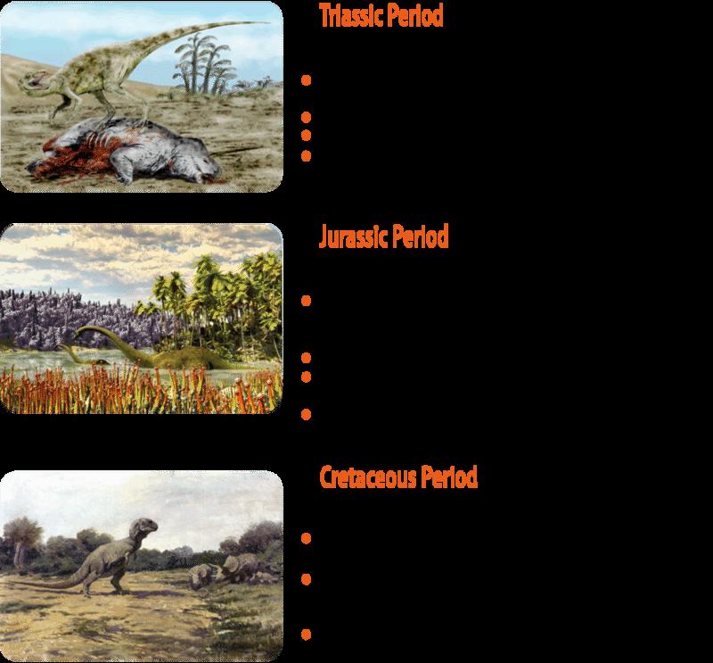 Jurassic period plants and animals - photo#48