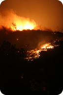 Santa Ana winds fuel wildfires in Southern California