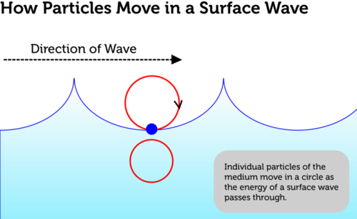 Particle in a traveling water wave