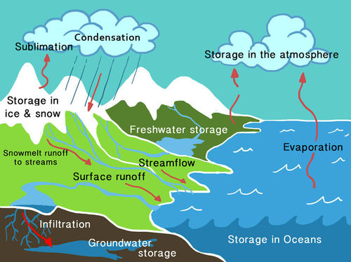 Condensation ck 12 foundation diagram of the water cycle thecheapjerseys Images