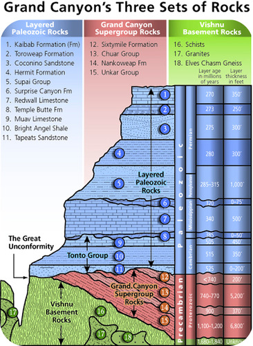 The Paleozoic sedimentary rocks of the Grand Canyon were deposited during marine transgressions and regressions