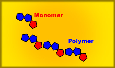 Carbon Monomers and Polymers Quiz - MS PS