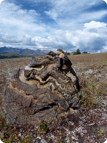 Metamorphic Rocks   CK-12 Foundation