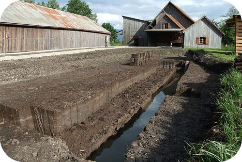 Peat is soil that is so rich in organic material, it can be burned for energy