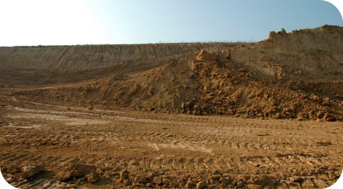 Picture of a loam field