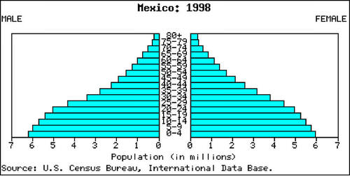 Mexico's population pyramid is typical of Stage 3 population