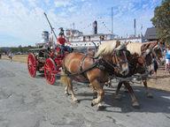 A team of three horses provides 3 horsepowers of power
