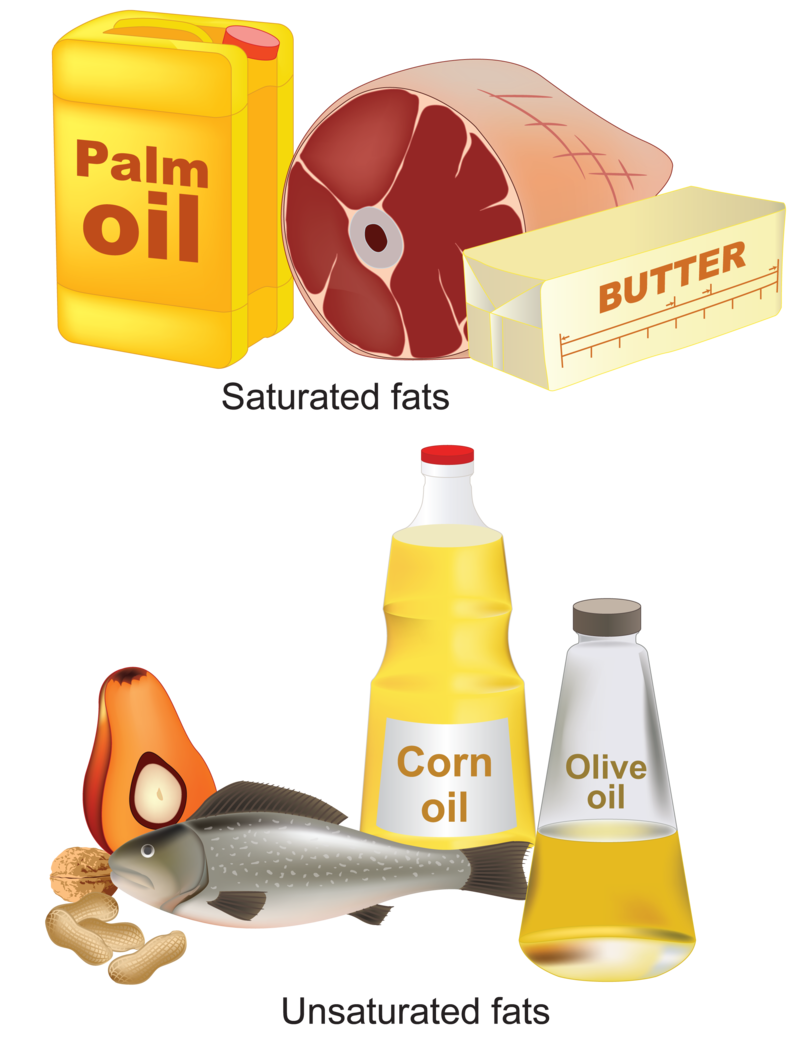 Examples Of Unsaturated Fat 36