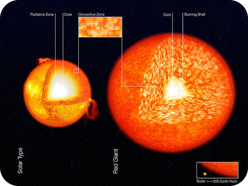 14.6 Red Giants and White Dwarfs