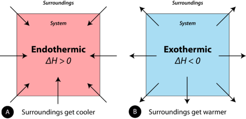 Endothermic reactions absorb heat, while exothermic reactions release heat