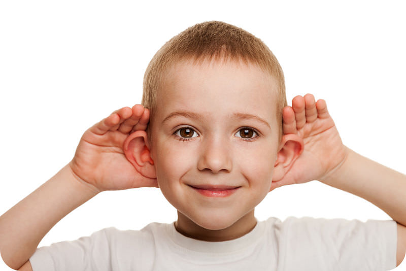 Hearing And The Ear Read Physics Ck 12 Foundation