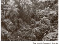 Defining Biological Diversity