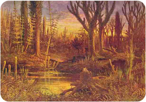 Paleozoic era Devonian period forest, with club mosses, horsetails, and ferns