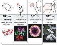 The nanoscale.