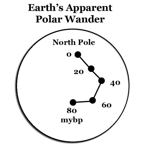 The apparent path traveled by the location of the north magnetic north pole