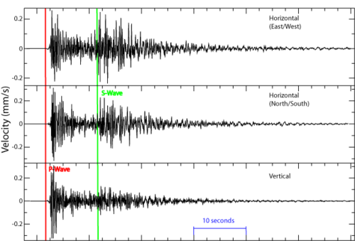 These seismograms show the arrival of P-waves and S-waves