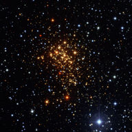 Stars in a star cluster