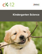 CK-12 Kindergarten Science