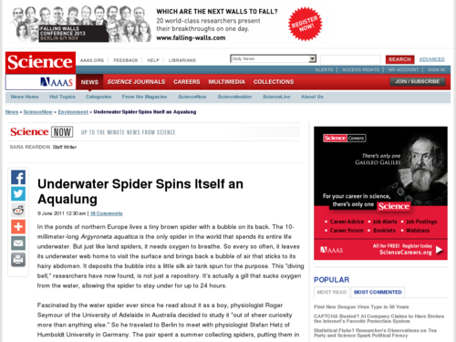 Underwater Spider Spins Itself an Aqualung