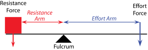 Diagram of a class one lever